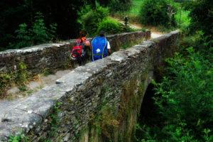 Camino de Santiago. Joy of life