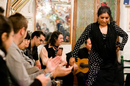 Introduction to Flamenco in Andalucía